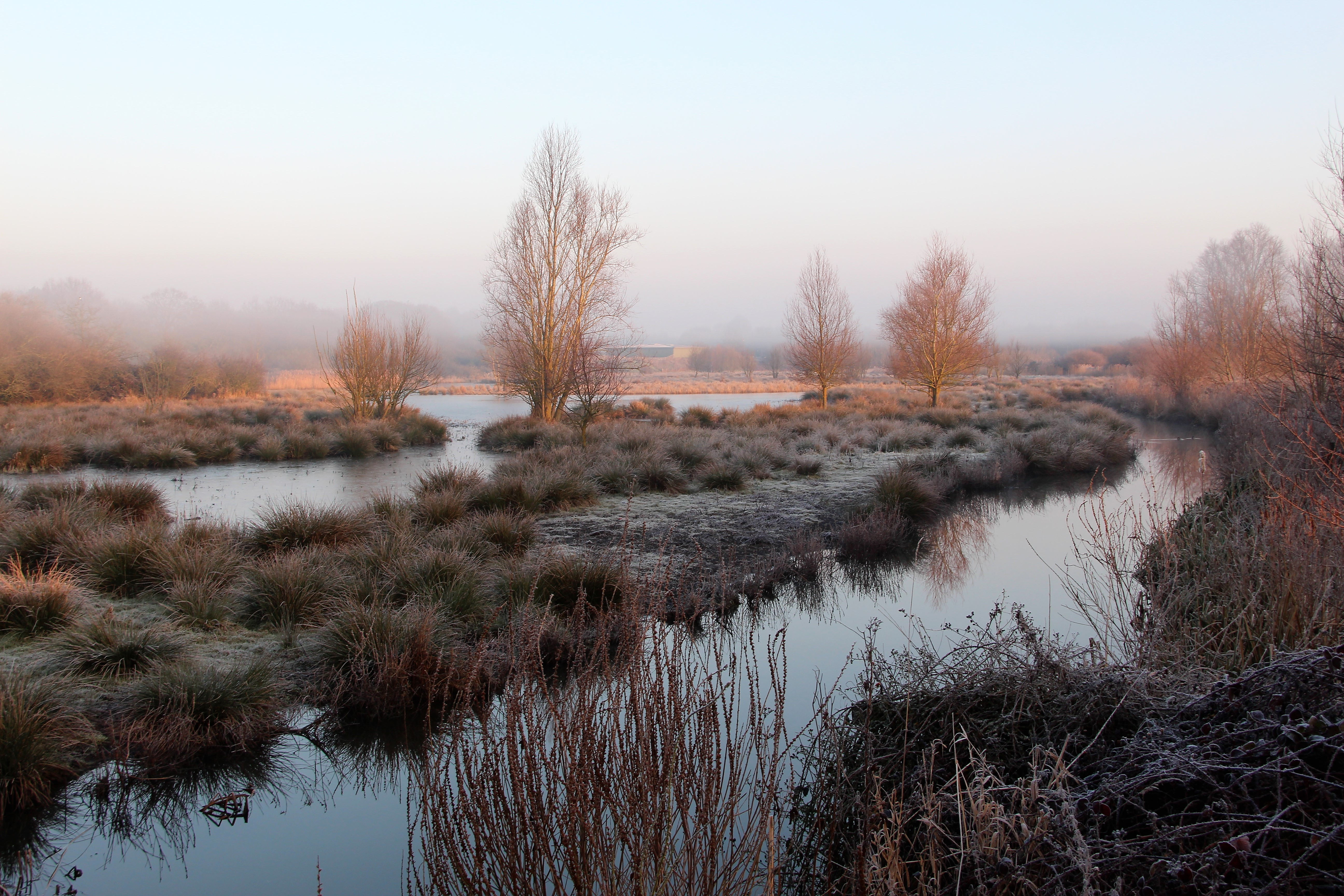 Robert Stevenson won the last Photographic competition with a photo of  Ingrebourne Marshes.