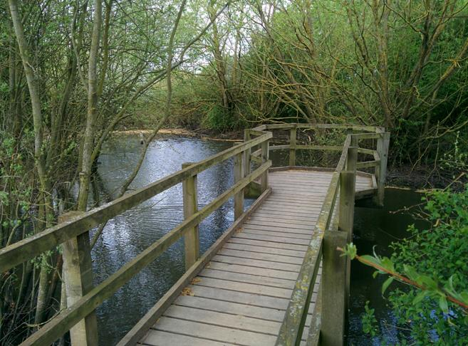 Boardwalk and pond at Thames Chase